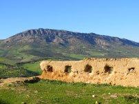 Ruins of Merinid