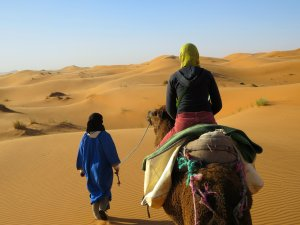 Sahara Camel Ride View