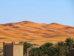 Sand Dunes Sahara