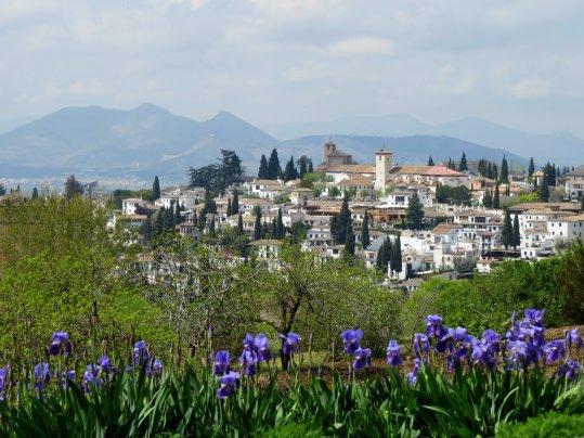 Granada Skyline Flowers